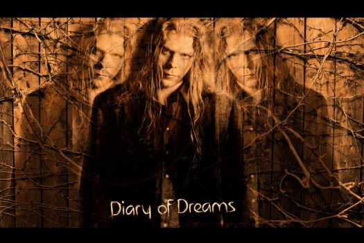 Diary of Dreams 33 by serialkiller07