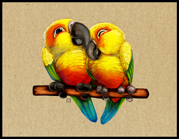 Conure Cuddles by ArtofJefferyHebert