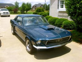 My Mustang by absoluteandrew