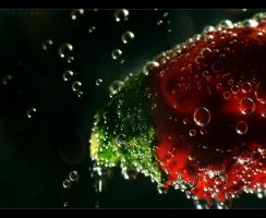 Bubblecious by indifferens