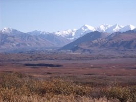 Muldrow Glacier, Denali by Speck2