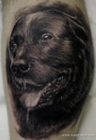 Dog portrait by Remistattoo