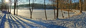 Frozen Pond by m4tyas