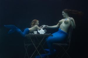 Fins Off the Table, Please! by alberich