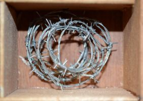 Compartment 3 - Barbed Wire by ArVaWe