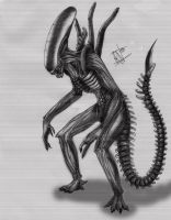 Alien unfinished by Irkis
