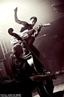 The Living End. Hamburg 2 by Amurrr