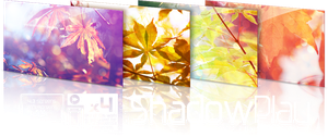 Shadow Play : Collab by Ikue