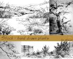 Stock - hand drawn plants by akreon