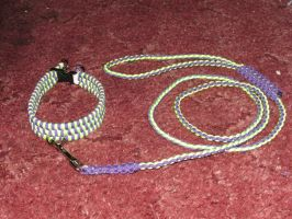 Purple and Green Collar and Leash by DenaliVonChrystshun