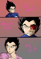 Same person,diff.styles-Vegeta by Michsi