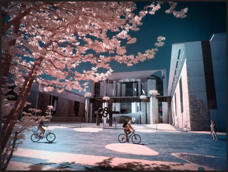 Merkels Palace in Spring Time infrared by MichiLauke