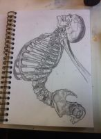 Skeleton sketch by SimoneFloyd