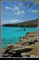 Jumping... by simoner