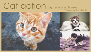 Action #01 by seredirectioner
