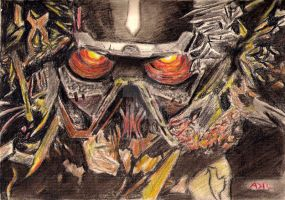 Killzone Helghast by kill312