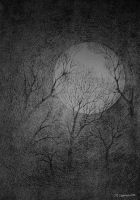 moon one by mzam