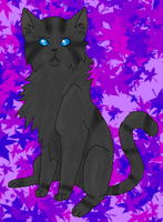 Jayfeather - Contest by cat-women2