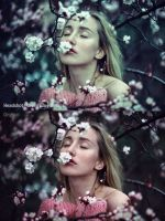 50 Premium Lightroom Presets by mudgalbharat