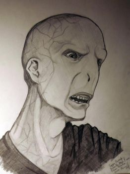 lord voldemort by elenann