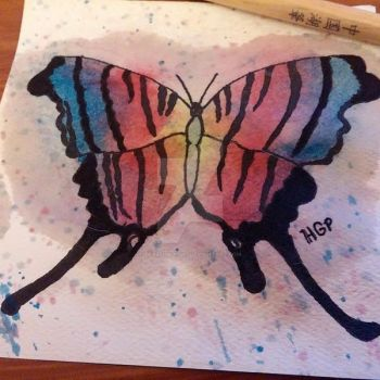 Rainbow Colored Zebra Butterfly Watercolor by TeaZeInYa1287