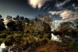 A Beautifull Flood by photorealm