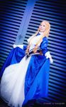 Shall We Dance, Your Highness? by Animaidens