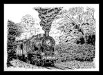 Steam locomotive Ok22 - pen and ink. by czajka