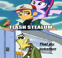 Flash Stole Ed Pokemon Parther by newsuperdannyzx