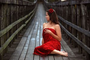 Bridge 3 by Elegia-stock