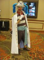 Animefest '13 - One Piece 2 by TexConChaser