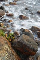 Stones, water and some green stuff by Sekundkvadrat