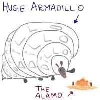 Armadillo by sanscesse