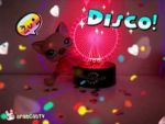 LPS NTM Cycle 2 Disco for Sylveon by AwesomeJammerAJ