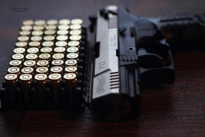 Walther P22 by Dj-TheKiller