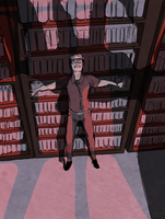 Library Haunting by Solitude6