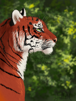 Pensive Tiger by graphiteforlunch