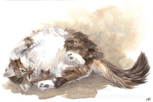 Fluffy and Playful by Pannya