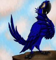 COMMISSION:. Hyacinth Macaw by MelHellMoon