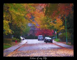 Colors of my Life by Lord-Rhesus
