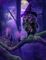Harry owl by VanessaPadua