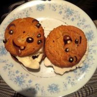 cookie pusss by Makinita