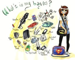 Which one to Choose ? Bag Meme by kya-san