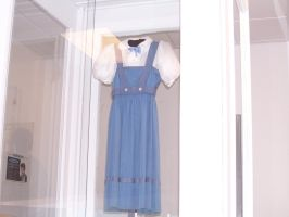 Wizard of Oz Test Dress by MadForHatters