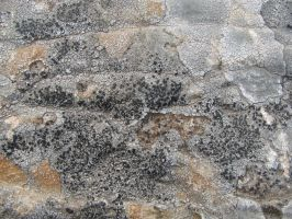 Stone Texture 08 by vl2r