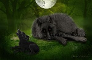 Wolves---Full-moon by JaneEden