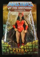 MOTUC custom Catra packaged by masterenglish