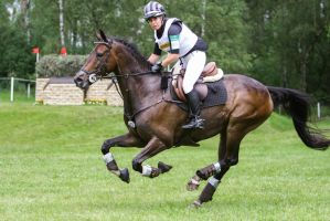3DE Cross Country Speed Up Galop by LuDa-Stock