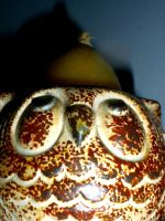 Owl Candle by EveryDayIsNewToMe