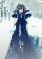 Gothic Beauty by Donna-Lynn